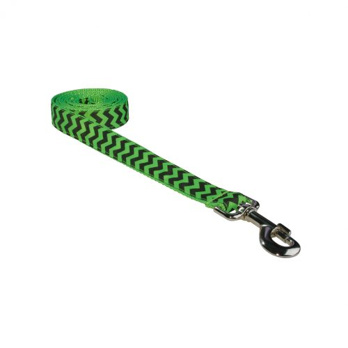 CHEVRON GREEN LG LEASH