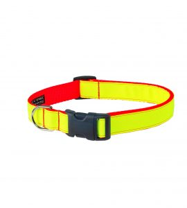 NEON LIME ORANGE LG CLR