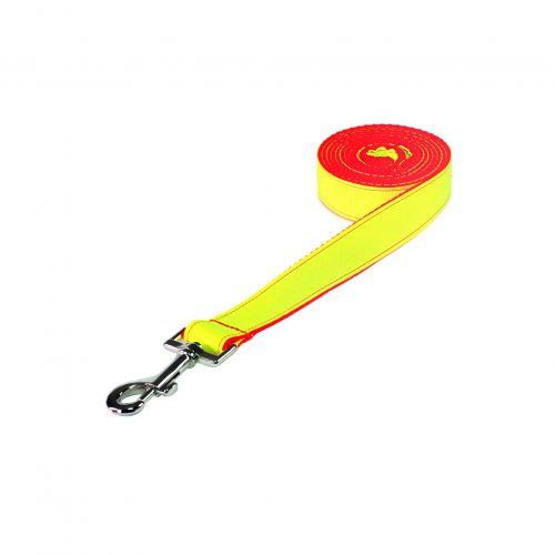 NEON LIME ORANGE LG LEASH