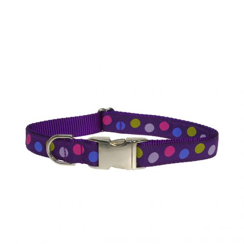 POLKA DOT PURPLE MULTI LG CLR