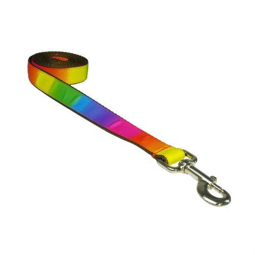 RAINBOW S-L LEASH