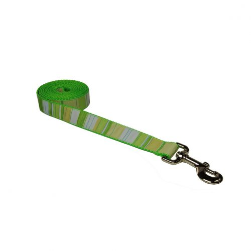 STRIPES GREEN MULTI S-L LEASH