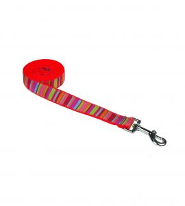 STRIPES LIME CORAL S-L LEASH