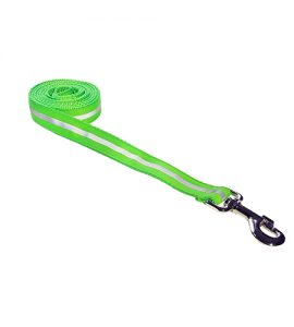 REFLECTIVE-GREEN LEASH