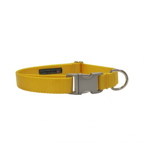 SOLID YELLOW METAL BUCKLE S-L CLR